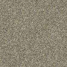 Shaw Floors Bellera Perpetual II Net Eggshell 00102_E9788