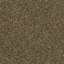 Shaw Floors Bellera Perpetual II Net Gold Rush 00200_E9788