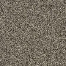 Shaw Floors Bellera Perpetual II Net Portobello 00703_E9788