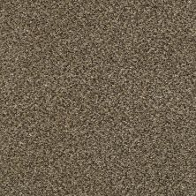 Shaw Floors Bellera Perpetual II Net Leather 00704_E9788