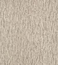 Shaw Floors Bellera Obvious Choice Net Linen 00110_E9791