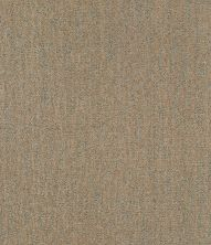 Shaw Floors Bellera Obvious Choice Net Gold Rush 00200_E9791