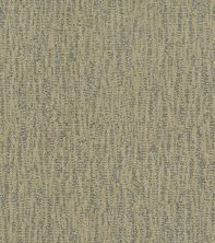 Shaw Floors Bellera Obvious Choice Net Chameleon 00302_E9791
