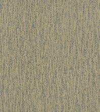 Shaw Floors Bellera Obvious Choice Net Chameleon 00302_E9791