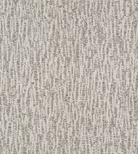 Shaw Floors Bellera Obvious Choice Net Nickel 00510_E9791