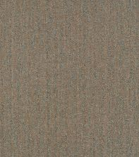 Shaw Floors Bellera Obvious Choice Net Bronze 00602_E9791