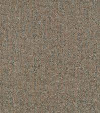 Shaw Floors Bellera Obvious Choice Net Bronze 00602_E9791