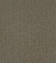 Shaw Floors Bellera Obvious Choice Net Mahogany 00702_E9791