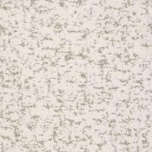 Shaw Floors Bellera Make Your Mark Net Snow Fall 00101_E9792