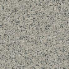 Shaw Floors Bellera Make Your Mark Net Sterling 00501_E9792