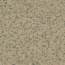 Shaw Floors Bellera Make Your Mark Net Khaki 00700_E9792