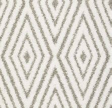 Shaw Floors Bellera Diamonds Forever Net Super Fine 00100_E9793