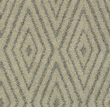 Shaw Floors Bellera Diamonds Forever Net Chameleon 00302_E9793