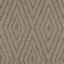 Shaw Floors Bellera Diamonds Forever Net Copper Tone 00602_E9793