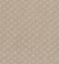 Shaw Floors Foundations Entwined With You Net Studio Taupe 00173_E9809