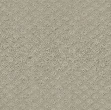 Shaw Floors Value Collections Entwined With You Net Silhouette 00570_E9809