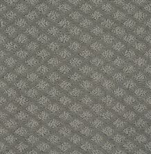 Shaw Floors Value Collections Entwined With You Net Metal 00577_E9809