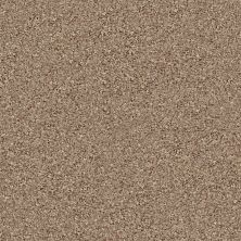 Shaw Floors Value Collections Connect Iv Native 98710_E9834