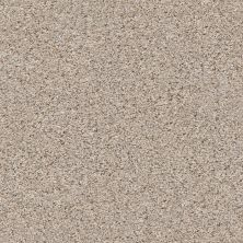 Shaw Floors Value Collections Nature Path Net Pencil Sketch 00570_E9847