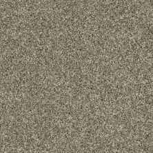 Shaw Floors Value Collections Shake It Up Tweed Net Fox Fur 00102_E9858