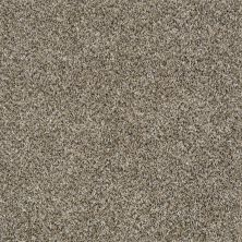 Shaw Floors Value Collections Shake It Up Tweed Net Gold Mine 00201_E9858