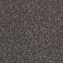 Shaw Floors Value Collections Shake It Up Tweed Net Salt And Pepper 00501_E9858