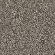 Shaw Floors Value Collections Shake It Up Tweed Net English Oak 00700_E9858