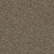 Shaw Floors Value Collections Shake It Up Tonal Net Roasted Coffee 00721_E9859