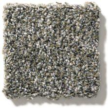 Shaw Floors Simply The Best You Got It I Granite Dust NA240_00511