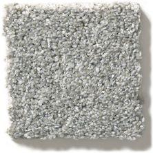 Shaw Floors Simply The Best You Got It II Stone Path NA241_00503