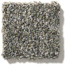 Shaw Floors Simply The Best You Got It II Granite Dust NA241_00511