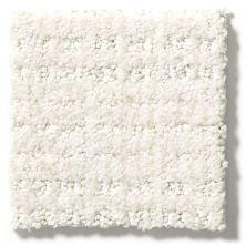 Shaw Floors Hubbell 30 Crisp Linen 00172_E9880