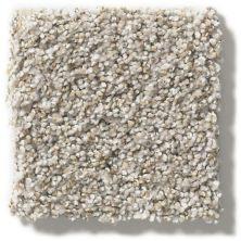 Shaw Floors Hubbell 31 Cobble Stone 00573_E9881