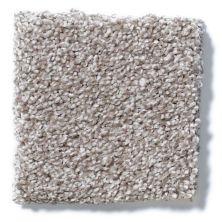 Shaw Floors Hubbell 32 Flint Stone 00793_E9882