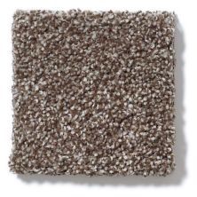 Shaw Floors Hubbell 32 Cobble Brown 00798_E9882