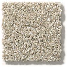 Shaw Floors Hubbell 33 Grecian Stone 00172_E9883