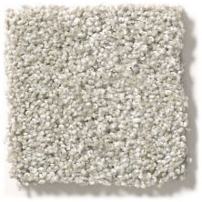 Shaw Floors Hubbell 33 Pearl Smoke 00175_E9883