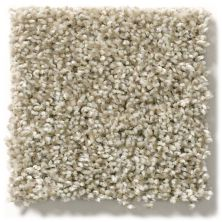 Shaw Floors Hubbell 35 Stucco 00112_E9885