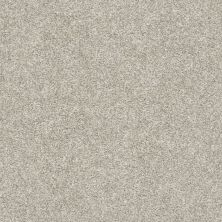 Shaw Floors Simply The Best All Over It II Net Oatmeal 00100_E9891