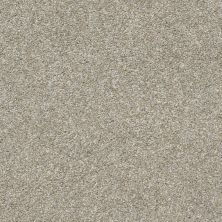 Shaw Floors Value Collections All Over It II Net Misty Harbor 00510_E9891