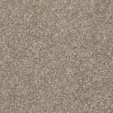 Shaw Floors Value Collections All Over It II Net Weathered 00710_E9891