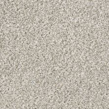 Shaw Floors Value Collections All Set II Net Quartz 00100_E9895