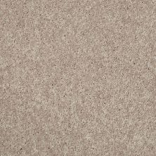 Shaw Floors Value Collections Kickoff Taupe Stone 00110_E9899