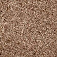 Shaw Floors Value Collections Kickoff Caramel Latte 00201_E9899