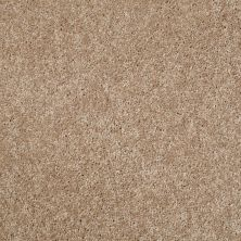 Shaw Floors Value Collections Kickoff Blond Oak 00202_E9899