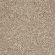 Shaw Floors Value Collections Kickoff Weathered Wood 00300_E9899