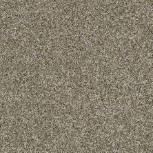 Shaw Floors Value Collections Color Moxie Park Trail 00102_E9900