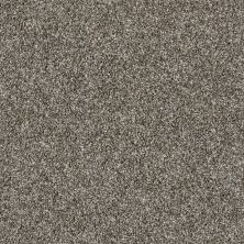 Shaw Floors Value Collections Color Moxie Bird Bath 00700_E9900