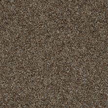 Shaw Floors Value Collections Color Moxie Chateau 00701_E9900