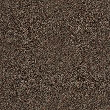 Shaw Floors Value Collections Color Moxie Manor House 00702_E9900